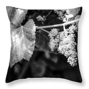Wild Grapes In Light 2 Throw Pillow