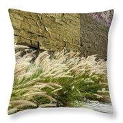 Wild Grass Along An Alley Wall Throw Pillow