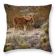 Wild Horse At Cold Creek Throw Pillow