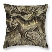 Wild Horse Cavern Throw Pillow