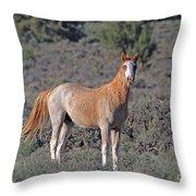 Wild Horse Throw Pillow
