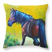 Wild Horse On Dartmoor - Roaming Free Throw Pillow