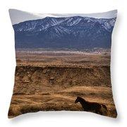 Wild Horse On The Run Throw Pillow