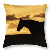 Wild Horse Sunrise Throw Pillow