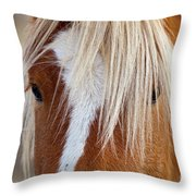 Wild Horses In Wyoming Throw Pillow