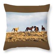 Wild Horses On The Bisti Throw Pillow
