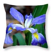 Wild Iris 3 Throw Pillow
