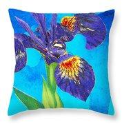Wild Iris Art By Sharon Cummings Throw Pillow