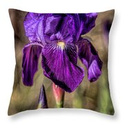 Wild Iris Throw Pillow