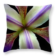 Wild Iris Macro On Black Throw Pillow