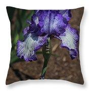 Wild Iris Ridge Throw Pillow