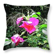 Wild Irish Rose Throw Pillow
