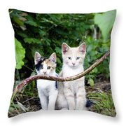 Wild Kats Throw Pillow