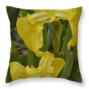 Wild Lilly Throw Pillow