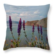 Wild Lupines Throw Pillow