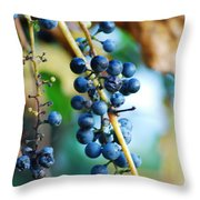 Wild Michigan Grapes Throw Pillow