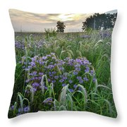 Wild Mints And Foxtail Grasses At Glacial Park Throw Pillow