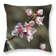 Wild Mountain Blossoms Throw Pillow
