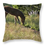 Wild Mountain Lupine Throw Pillow