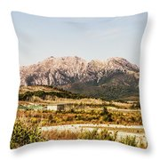 Wild Mountain Range Throw Pillow