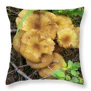 Wild Mushrooms 1 Throw Pillow