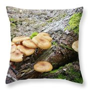 Wild Mushrooms 2 Throw Pillow