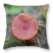 Wild Mushrooms 3 Throw Pillow
