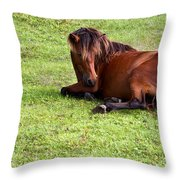 Wild Mustang At Rest Throw Pillow