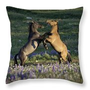 Wild Mustangs Playing 1 Throw Pillow by Roger Snyder