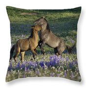Wild Mustangs Playing 2 Throw Pillow