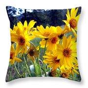 Wild Okanagan Sunflowers Throw Pillow