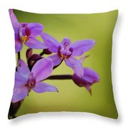 Wild Orchids 2 Throw Pillow