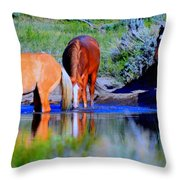 wild Palomino stallion of the Great Basin Country  Throw Pillow