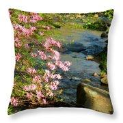 Wild Piedmont Azalea 4 Throw Pillow
