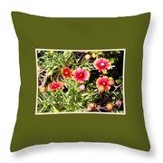 Wild Pink Beauty  Throw Pillow