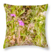 Wild Pink Dianthus Throw Pillow