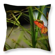 Wild Plants Throw Pillow
