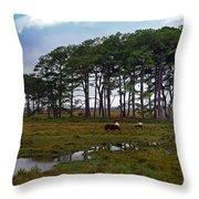 Wild Ponies Of Assateague Throw Pillow