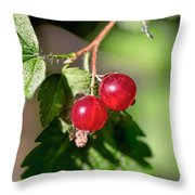 Wild Red Goosberries Throw Pillow