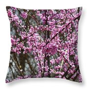 Wild Redbuds Throw Pillow