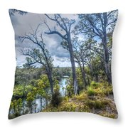 River Bush Track Throw Pillow