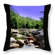 Wild River Throw Pillow