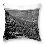 Wild Rivers Throw Pillow