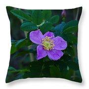 Wild Rose 1 Throw Pillow