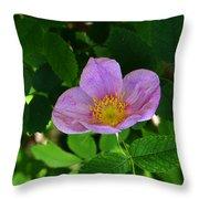 Wild Rose 4 Throw Pillow