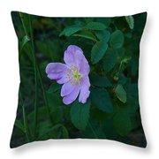 Wild Rose 6 Throw Pillow
