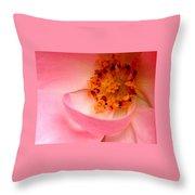 Wild Rose Bowl  Throw Pillow