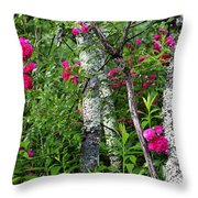 Wild Rose In Sumac Throw Pillow