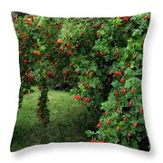 Wild Rosehips Throw Pillow