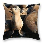Wild Sea Lions  Throw Pillow